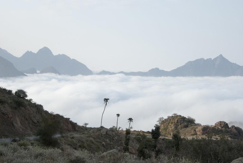 Yemen-25.jpg