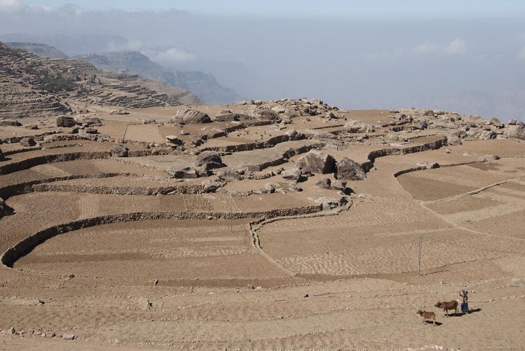 Yemen-28.jpg