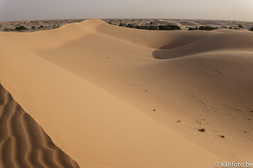 Nouakchott-9.jpg