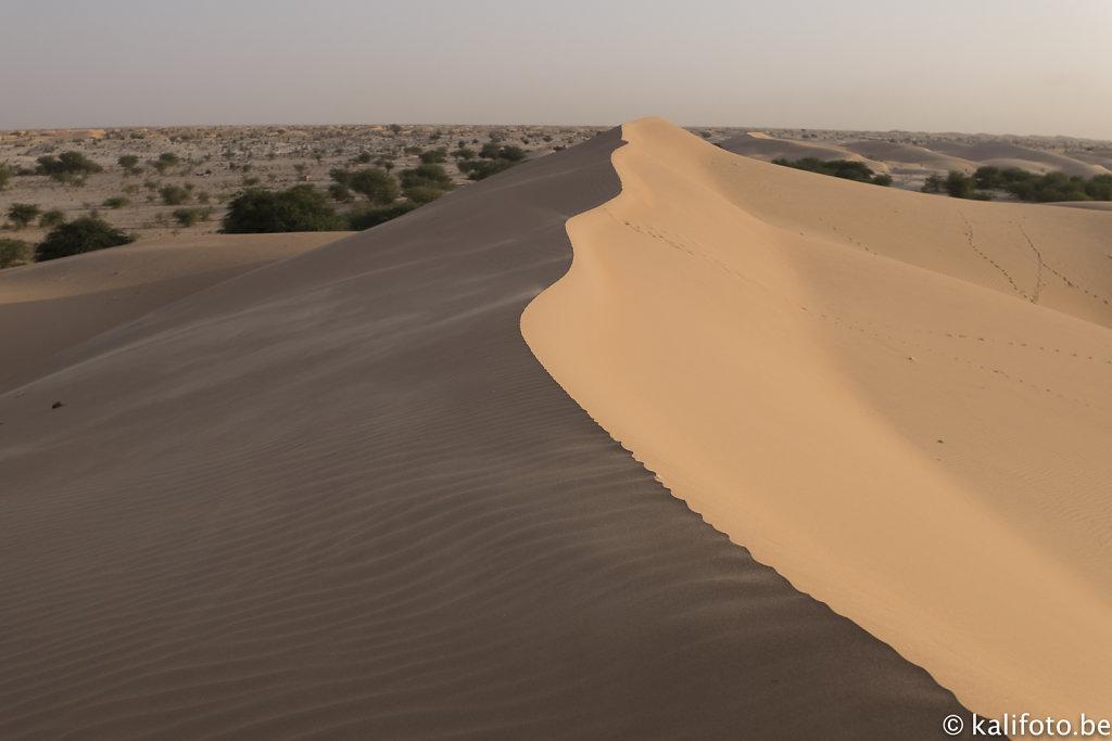 Nouakchott-13.jpg