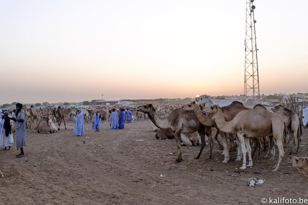 Nouakchott-20.jpg