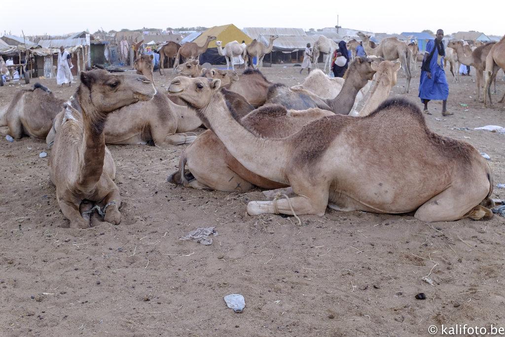 Nouakchott-27.jpg